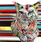 Cat Portraits Mixed Media Prints - Kitten 2 Print by Brian Buckley