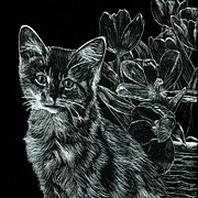 Tulips Drawings Prints - Kitten and Basket of Tulips Print by Jennifer Atherton