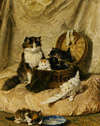 Henriette Posters - Kittens At Play Poster by Henriette Ronner Knip