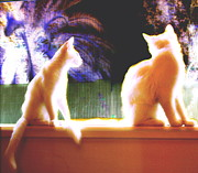 Kittens Digital Art Originals - Kittens in Paradise by Marsha Wright
