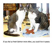 Fed Prints - Kitty Cat Ultimatum  Print by Jack Pumphrey