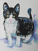 Kitty Print by Chrisann Ellis