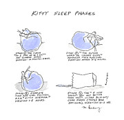 Molly Brandenburg - Kitty Sleep Phases