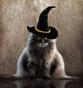 Kitty Digital Art - Kitty Witch by Lynn Jackson