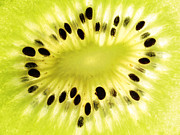 Piece Digital Art Prints - KIWI Fruit Print by Mingqi Ge
