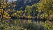 Autumn Leaf On Water Photos - Klamath River Autumn by Loree Johnson