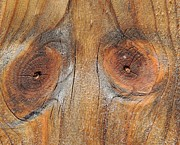 Knothole Prints - Knothole Face Print by Kathy Brown