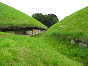 Kerb Framed Prints - Knowth Ancient Mounds Framed Print by Denise Mazzocco