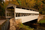 Old Roadway Posters - Knox Bridge in Autumn Poster by Michael Porchik