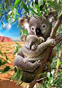 Koala And Cub Print by Adrian Chesterman