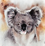 Koala Paintings - Koala  by Sandra Phryce-Jones