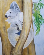 Koala Paintings - Koala Still Life by Patricia Beebe
