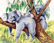 Koala Paintings - Koalas Family at Rest by Bob Patterson
