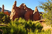 Geobob Metal Prints - Kodachrome Basin State Park Utah Metal Print by Robert Ford