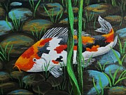 Koi Painting Posters - Koi Fish Poster by Katherine Young-Beck