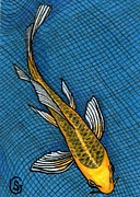 Net Drawings Posters - Koi - Gin Matsuba Butterfly -- Please Take Me Home Poster by Sherry Goeben