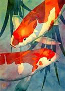 Watercolor Framed Prints - Koi Love Framed Print by Robert Hooper