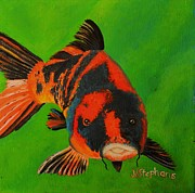 Lilly Pond Paintings - Koi by Nina Stephens