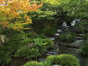 Kobe Photos - Kokoen Garden Waterfall - Himeji Japan by Daniel Hagerman