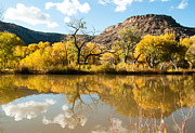 Red Leaves Photos - Kolob Pond in Fall Zion National Park Utah by Robert Ford
