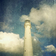 Seagul Prints - Kommetjie Lighthouse Print by Neil Overy