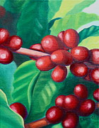Kristine Mueller Griffith - Kona Coffee