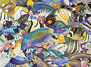 Hawaiian Fish Paintings - Kona Crowd by Lucy Arnold