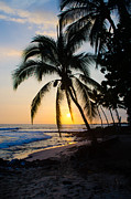 Tangerine Framed Prints - Kona Sunset 2 Framed Print by Chris Ann Wiggins
