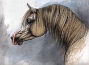 Stallion Drawings - Kordelas by Angel  Tarantella