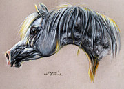 White Arab Pastels Prints - Kordelas polish arabian horse soft pastel Print by Angel  Tarantella