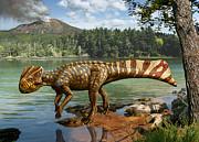Julius Csotonyi - Koreaceratops...