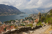 Port Town Framed Prints - Kotor Panoramic View From the Fortress Framed Print by Kiril Stanchev