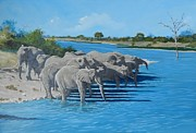 Robert Teeling - Kruger Elephants