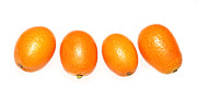 Edible Framed Prints - Kumquats  Framed Print by Nicholas Burningham