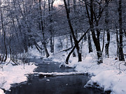 Winter Photos Prints - Kuz minsky park Print by Anonymous