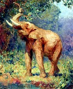Wildlife Landscape Paintings - L Elephant by Pg Reproductions