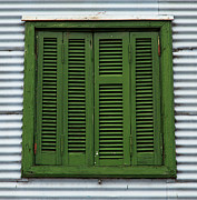 John Daly - La Boca Shutter Green