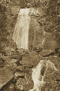 La Coca Waterfall Prints - La Coca Falls El Yunque National Rainforest Puerto Rico Prints Vintage Print by Shawn OBrien