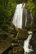 La Coca Waterfall Prints - La Coca Falls  Print by Sai Chandrasekharan