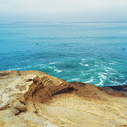 Beach Prints - La Jolla Coast Seagull Nest Print by Tanya Harrison