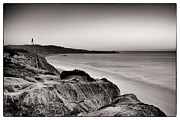 Beach Landscape Framed Prints - La Jolla from Torrey Pines Framed Print by Tanya Harrison