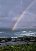West Coast Art Prints - La Jolla Rainbow Print by Sandra Bronstein