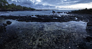 Brad Scott - La Perouse Tide Pools
