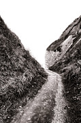 Walking Path Prints - La Valleuse Print by Olivier Le Queinec