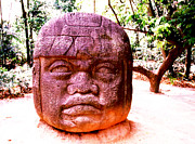 Olmec Framed Prints - La Venta - Olmec Head Framed Print by Robert  Rodvik
