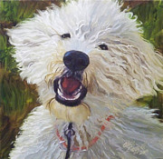 Happy Dog Framed Prints - Labradoodle Framed Print by Alice Leggett
