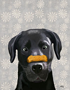 Canine Prints Digital Art Prints - Labrador Black with Bone on Nose Print by Kelly McLaughlan