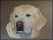 Vickie Sizemore - Labrador Retreiver