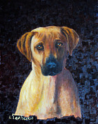 Laura Tasheiko - Labrador Retriever...