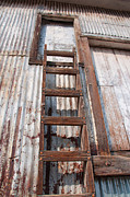 Feed Mill Photo Metal Prints - Ladder 1 Metal Print by Minnie Lippiatt